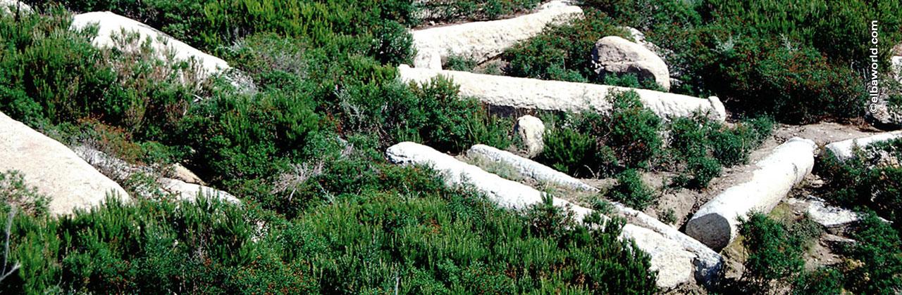 I Reperti Storici In Granito Dell Isola D Elba